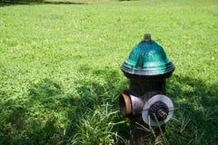 Bouche d'incendie sur le champ Photos libres de droits