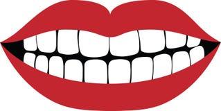 Bouche de sourire Photos libres de droits