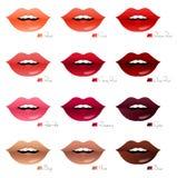 Bouches avec différentes nuances des rouges à lèvres Image libre de droits