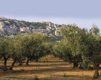 Bouches du rhone Provenza della Francia Provenza il alpi Immagini Stock