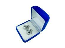 Boucle d'oreille de diamant Photographie stock libre de droits