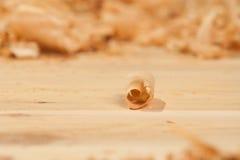 Boucle de cèdre Image libre de droits