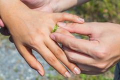 Boucle de mariage d'herbe Image libre de droits