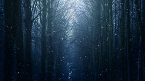 Boucle de paysage d'hiver clips vidéos