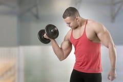 Boucle debout d'haltère de biceps Photos libres de droits