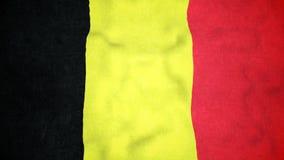 Boucle visuelle sans couture de drapeau belge banque de vidéos