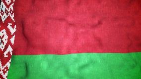 Boucle visuelle sans couture de drapeau biélorusse banque de vidéos