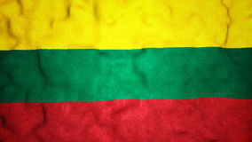 Boucle visuelle sans couture de drapeau lithuanien banque de vidéos