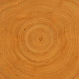Boucles d'accroissement - fond en bois Images stock