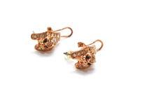 Boucles d'oreille Image stock
