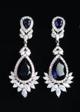 Boucles d'oreille argentées avec des bijoux Photographie stock libre de droits