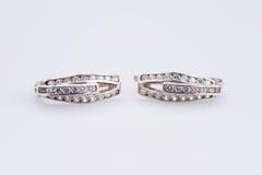 Boucles d'oreille argentées de luxe Image libre de droits