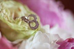 Boucles d'oreille avec des cristaux Photo stock