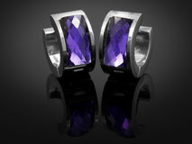 Boucles d'oreille avec des cristaux - acier inoxydable Image libre de droits