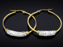 Boucles d'oreille avec des cristaux - acier inoxydable Images libres de droits