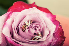 Boucles d'oreille de diamant d'or en belle fleur rose Photo stock