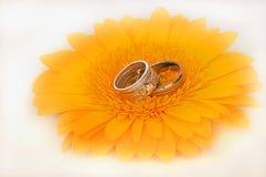 Boucles de mariage images stock