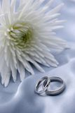Boucles de mariage - or blanc photo libre de droits