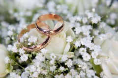 Boucles de mariage d'or sur des couleurs Images libres de droits