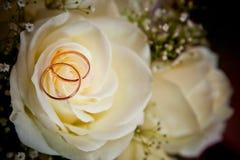 Boucles de mariage d'or sur des couleurs Photo libre de droits