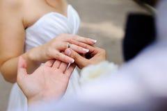 Boucles de mariage dans des mains des nouveaux mariés Photographie stock