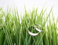 Boucles de mariage dans l'herbe images stock