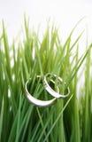Boucles de mariage dans l'herbe photos libres de droits