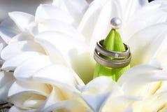 Boucles de mariage dans le bouquet Images libres de droits