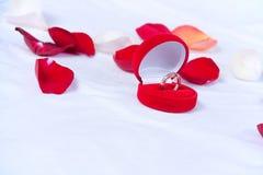 Boucles de mariage dans le cadre rouge Photo libre de droits