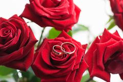 Boucles de mariage dans les roses rouges Images libres de droits