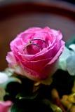 Boucles de mariage dans Rose rose Photos libres de droits