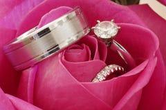 Boucles de mariage dans Rose rouge Photographie stock libre de droits