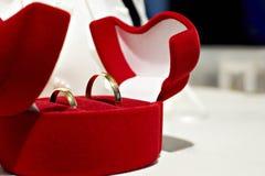 Boucles de mariage dans un beau cas Photographie stock libre de droits