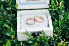 Boucles de mariage dans un cadre blanc Images stock