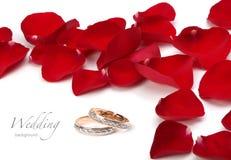 Boucles de mariage et pétales de roses Image libre de droits