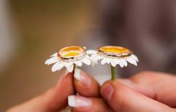 Boucles de mariage sur des fleurs Photographie stock libre de droits