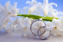 Boucles de mariage sur la jacinthe Photo libre de droits