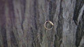 Boucles de mariage sur le bois l'anneau de mariage sur le fond en bois Anneaux de mariage sur le vieux fond en bois vieux anneaux Image libre de droits
