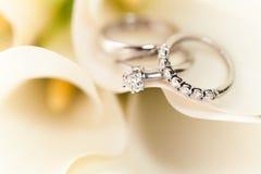 Boucles de mariage sur les fleurs blanches Photographie stock libre de droits