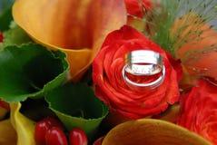 Boucles de mariage sur une fleur orange rouge Photo libre de droits