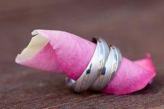 Boucles de mariage sur une rose Photo libre de droits