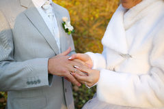 Boucles de mariages Photo stock