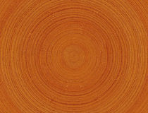 Boucles en bois Photographie stock libre de droits