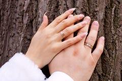 Boucles et mains de mariage Images stock