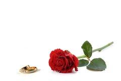 Boucles et roses de mariage Photo libre de droits