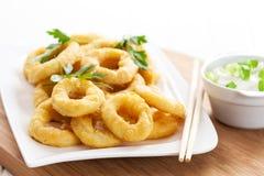 Boucles frites de calamari Photographie stock libre de droits