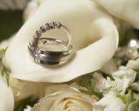 boucles wedding Photographie stock