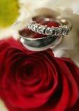 boucles wedding Images libres de droits