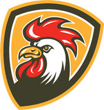 Bouclier de mascotte de tête de coq de poulet rétro Photos libres de droits