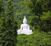 Bouddha blanc sur la montagne Images libres de droits